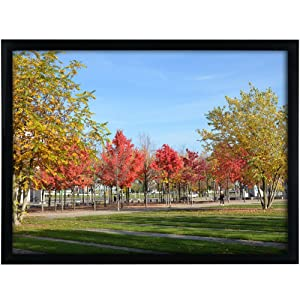 """Medog 12x16 Black Picture Frame Without Mat to Display Pictures 11.81x15.75 Window Size 11.37x15.35 Safety high Transparent PC Sheet Non Glass Wall Mounting pin-Hook not Included, (PFVC 16"""" BA)"""