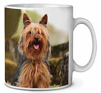 Yorkshire Terrier Hund Kaffeetasse Geburtstag Weihnachtsgeschenk