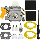 Amazon.com: HIPA 309368001 carburador + Tune Up Kit para ...