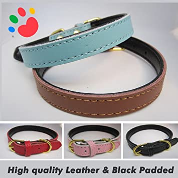PaddingPaws Strong Real Leather Dog collar Pet Cat Puppy Tan Black Pink Red Four Sizes
