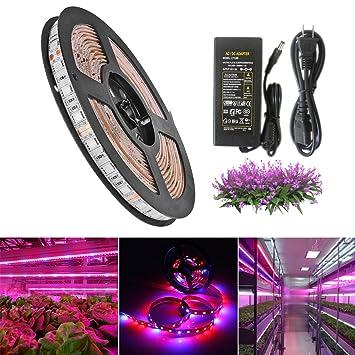 Review SJP Light®LED Plant Grow