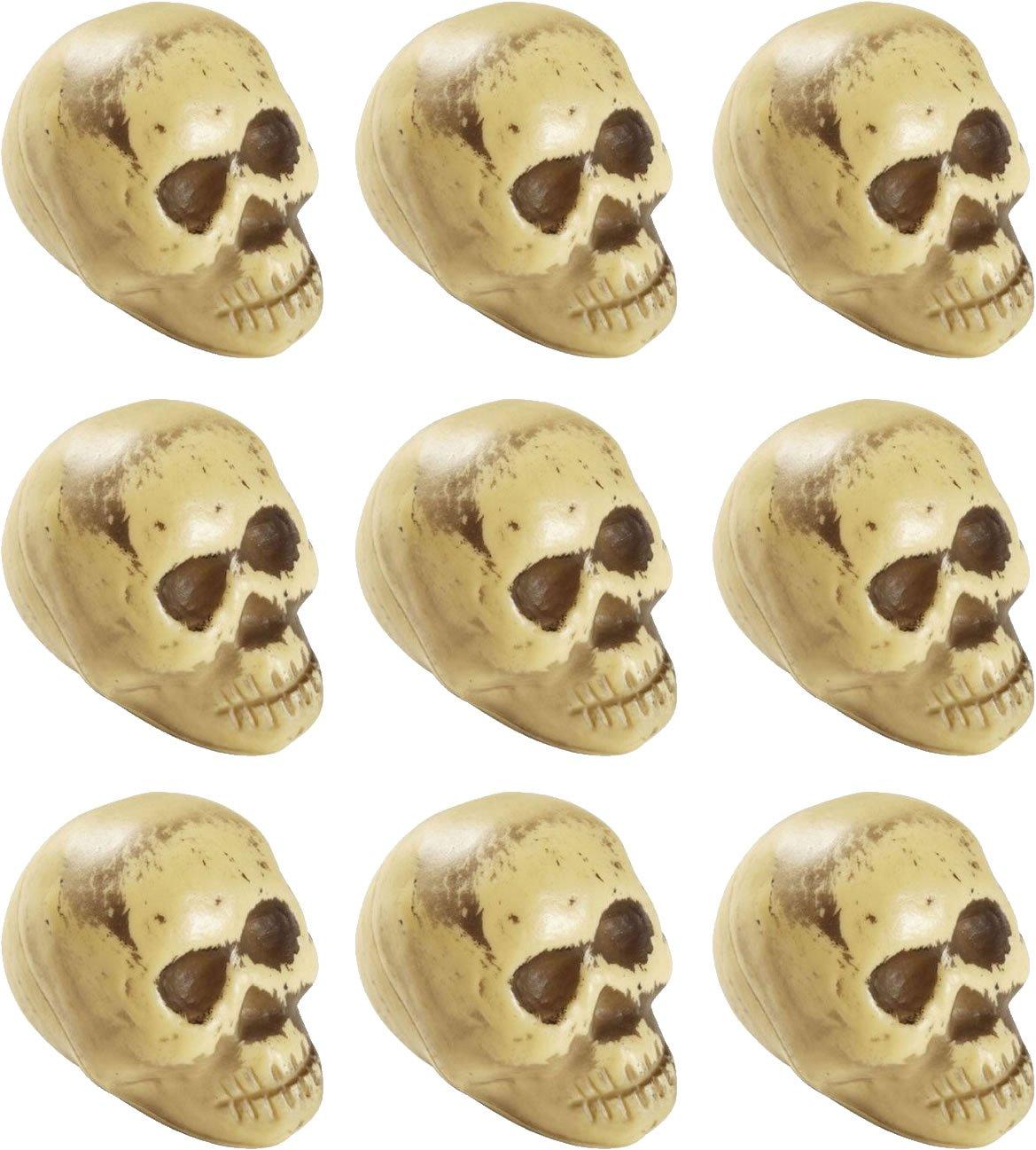 T/êtes de Morts pour la f/ête et de Party////D/écoration t/ête de mort Devise dhorreur Halloween Devise Deco notation etc. 9/pi/èces