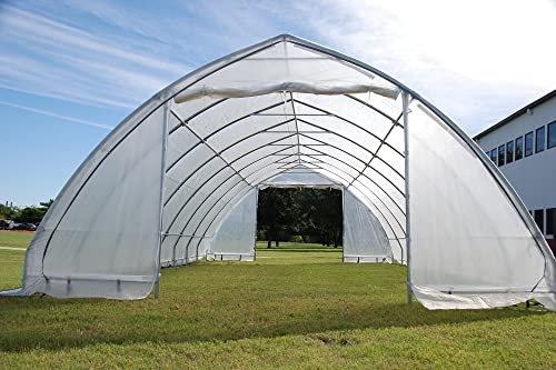 DELTA Canopies Large Walk-in Green Hot House Commercial Grade – Greenhouse 40 x20 Clear with Pointed Arch