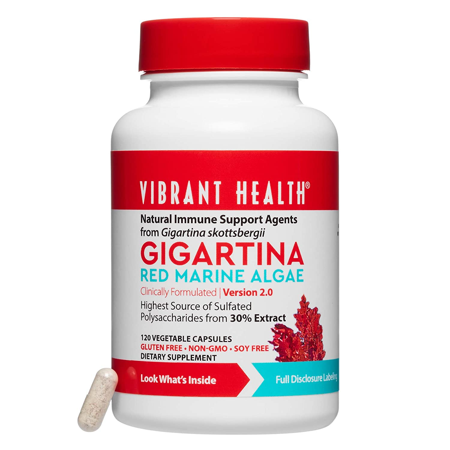 Vibrant Health – Gigartina Red Marine Algae, Natural Support for Immune Function and Healing, Gluten Free, Dairy Free, Non-GMO, Vegetarian, 120 Count FFP