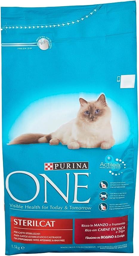 Purina ONE Bifensis Pienso para gatos Esterilizados Buey y Trigo 1 ...