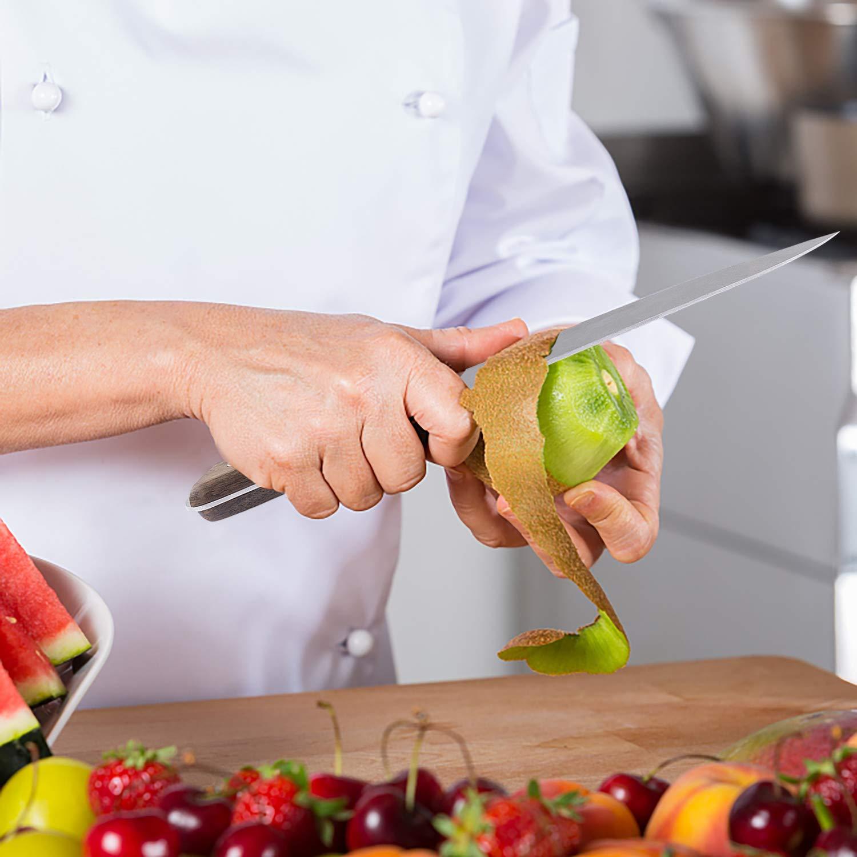 Homino Juego de Cuchillos de Cocina, 4 Piezas Cuchillos de Cocinero, Hoja de Acero Inoxidable Vegetales, Frutas, Carne, etc.