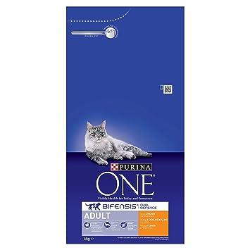 Purina One - Comida para gato seco de adulto , 6kg: Amazon.es: Productos para mascotas