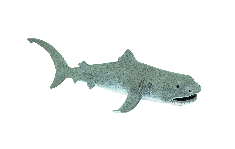Safari S201029 WS Sea Life Megamouth Shark