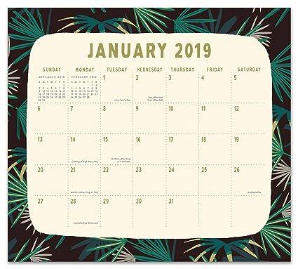 orange circle studio 2019 magnetic monthly calendar pad august 2018 december 2019 botanicals