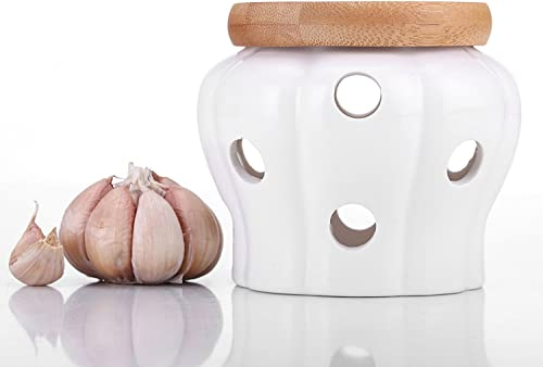 Vine Kitchen Garlic Keeper