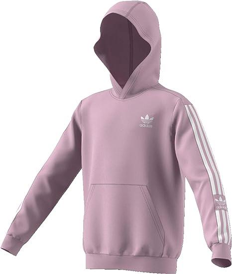 Sweat à Capuche Junior Adidas New Icon: : Sports et