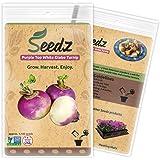 CERTIFIED ORGANIC SEEDS (Apr. 1,100) - Purple Top White Globe Turnip Seeds - Heirloom Seeds - Non GMO, Non Hybrid - USA