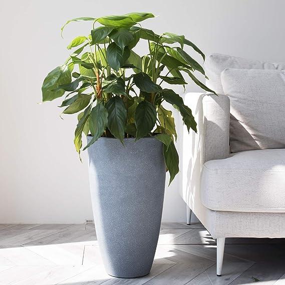 75 x 20 x 18 cm, Resistente a Las heladas, Alta Resistencia a los Rayos UV, Incluye Sistema de riego Aqua Comfort, Color Blanco Emsa 518679 My City Garden Macetero