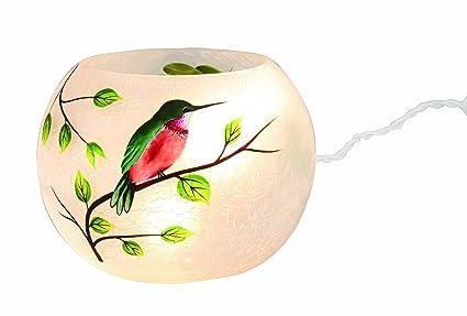 Amazon Transpac Round Glass Hummingbird Vase Led Home Kitchen