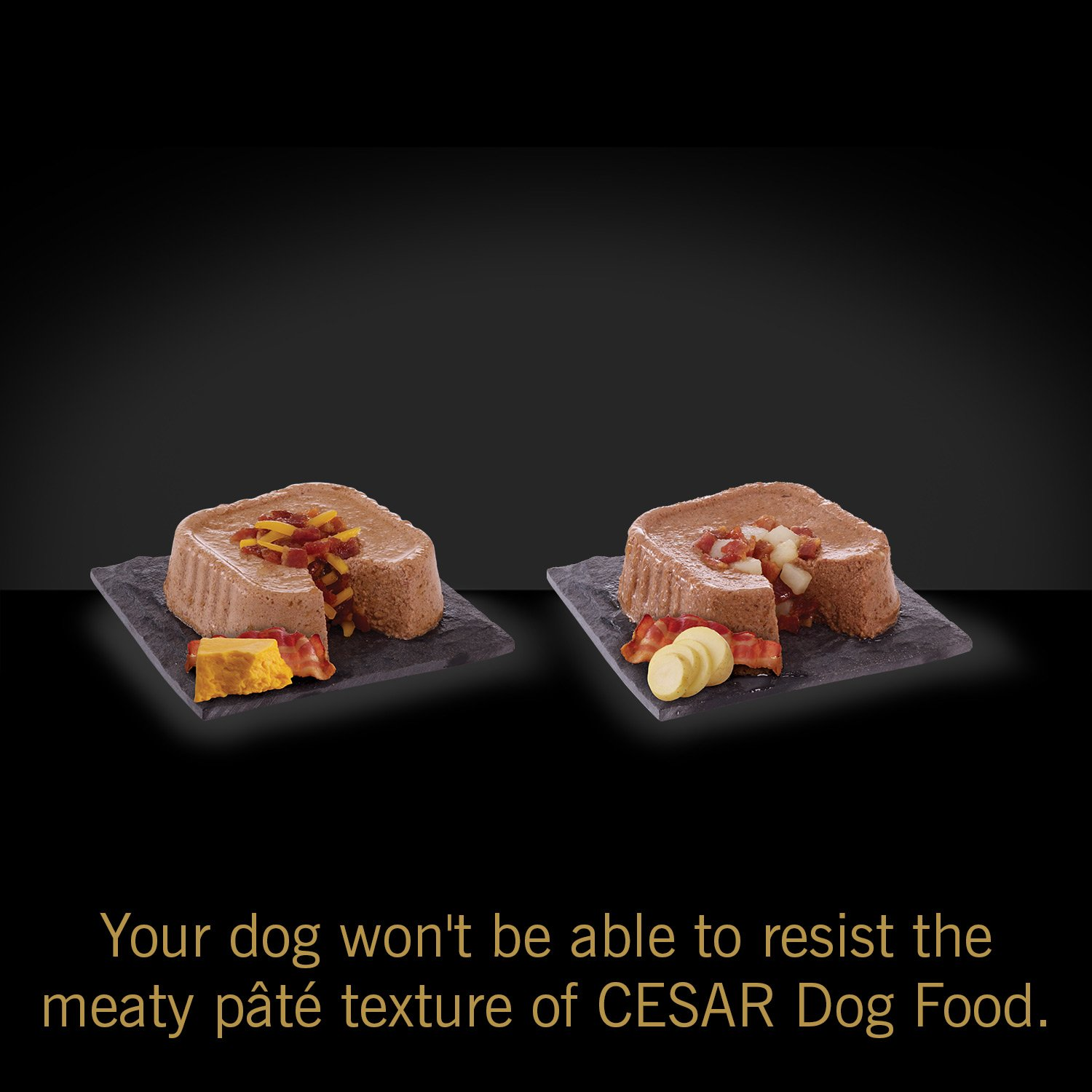 Cesar Savory Delights Variety Pack Rotisserie Chicken Flavor With Locklock Food Container Classics 34l Hpl848 Bacon And Cheese Filet Mignon Potato Dog Trays 35 Ounce