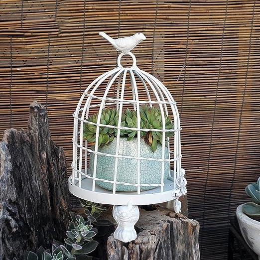 CJH Decoración Creativa para jardinería Jaula de pájaros Soporte ...