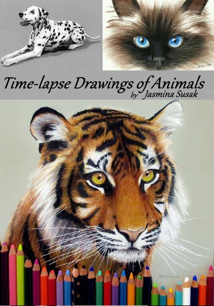 Amazon com: Time-lapse Drawings of Animals by Jasmina Susak