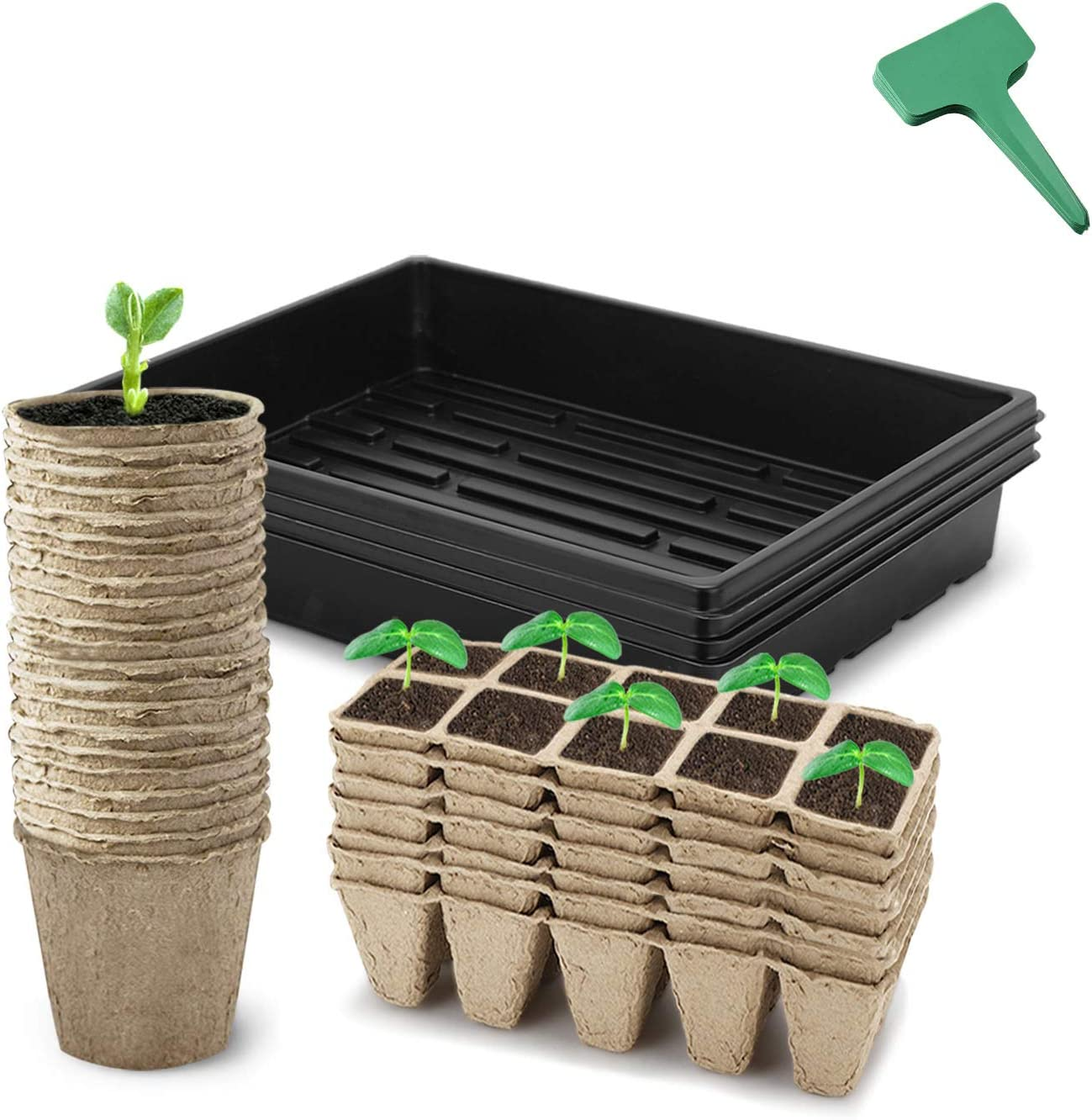 CEED4U Seed Starter Kit, 3 Inches Peat Pots, 80 Cells Peat Trays, 15x11 Inches Growing Trays, 15 Packs Plant Labels, Plant Cultivation Set for Gardeners, Classrooms, Greenhouse, DIY Projects