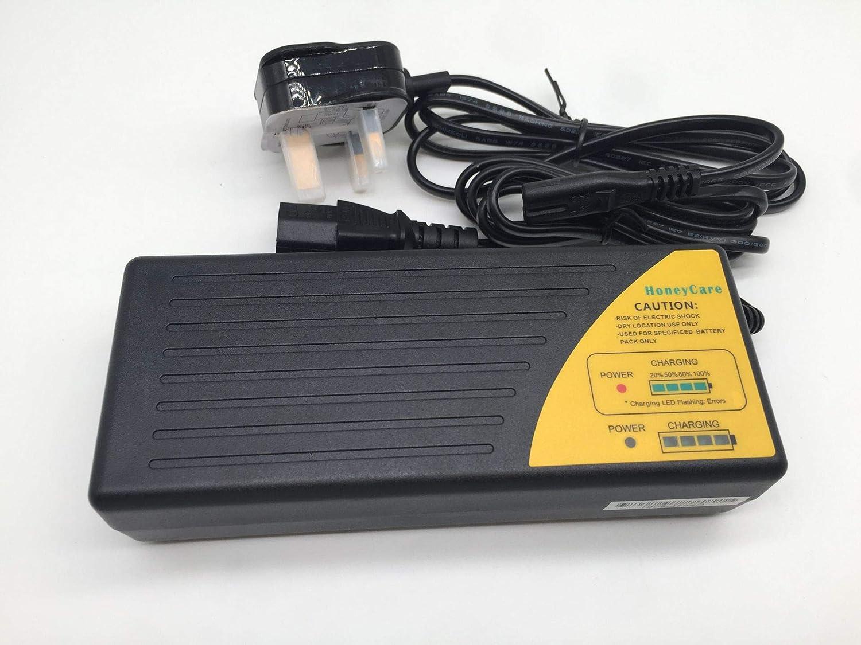 Cargador de batería de plomo ácido sellado SLA de 48 V, SLA AGM GEL VRLA Cargador de batería con indicador de combustible para scooter