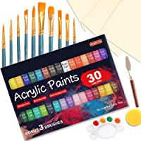 46 Pack Acrylic Paint Set, Shuttle Art 30 Colors Acrylic Paint with 10 Paint Brushes 3 Painting Canvas 1 Paint Knife…