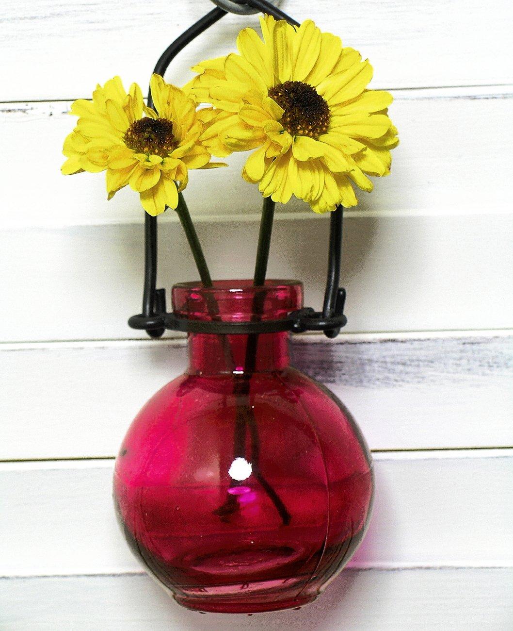Amazon hanging flower glass wall vase 1pc g73 red glass amazon hanging flower glass wall vase 1pc g73 red glass bottle floral vase colored vase bud vase garden vase home kitchen reviewsmspy
