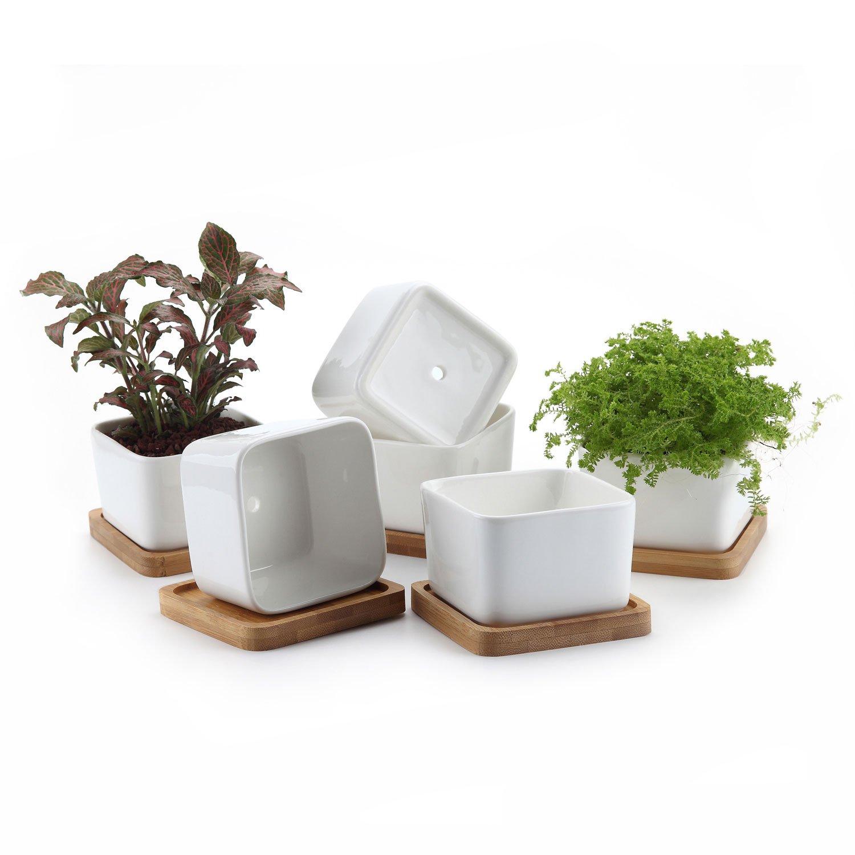 T4U 16.5CM 陶器鉢 白 矩形 植木鉢 多肉植物 サボテン鉢 竹トレイ付き 6個入り B075F2M35X パッケージ商品数: 6|No.9 No.9 パッケージ商品数: 6