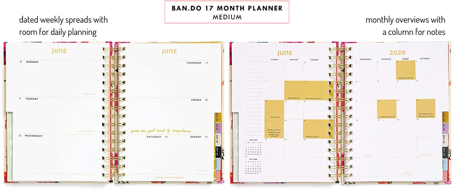 Ban.do 17 Month 2019-2020 Medium Daily Planner with Weekly & Monthly Views, 8