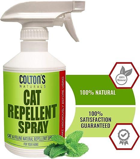 Amazon.com : Cat Repellent Outdoor