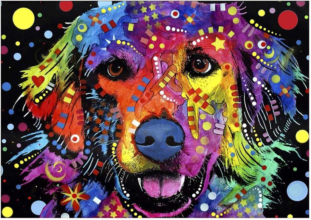40 x 30 cm Diamantkunst 30cm*40cm Niedlicher Hund Diamantmalerei-Sets f/ür Erwachsene 5D DIY Diamantmalerei komplettes Kreuzstich-Set Strassstein-Stickerei