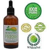Artemisia Organico Forza Massima 1:1 Estrazione Non Alcolico Tintura 200ml