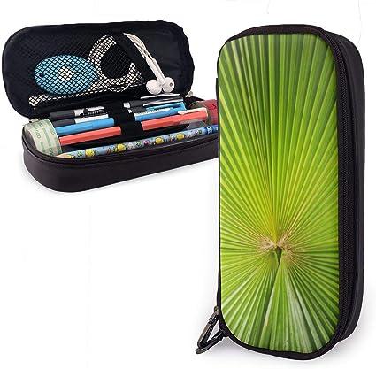 Estuche para lápices con diseño de hojas de abanico verde para niños y niñas, estuche para lápices de gran tamaño para estudiantes, universidad, suministros escolares y oficina: Amazon.es: Oficina y papelería