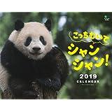 カレンダー2019 こっちむいてシャンシャン!