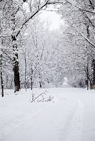 Amazon Com Aofoto 6x8ft Winter Forest Snowscape Backdrop Snowing Country Outdoors Snow Covered Trees Road Snowfield Photography Background Kid Girl Boy Adult Portrait Photo Shoot Studio Props Camera Photo