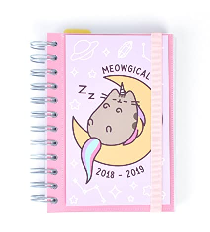 Amazon.com : Grupo Erik editores Pusheen The Cat - School ...