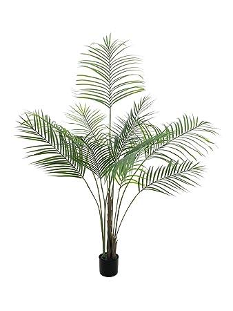 Amazonde Artplants Set 2 X Deko Großblatt Arecapalme 185 Cm