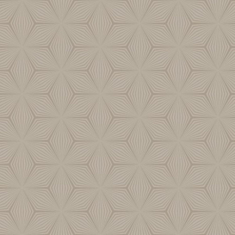 Geometric Star Wallpaper Silver Black Holden 126