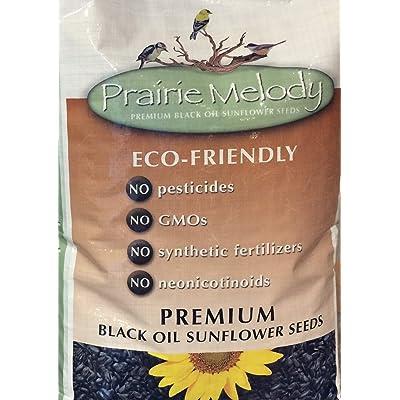 Prairie Melody(TM) Premium Black Oil Sunflower Bird Seed, Pesticide Free, 12-Pound Bag: Pet Supplies
