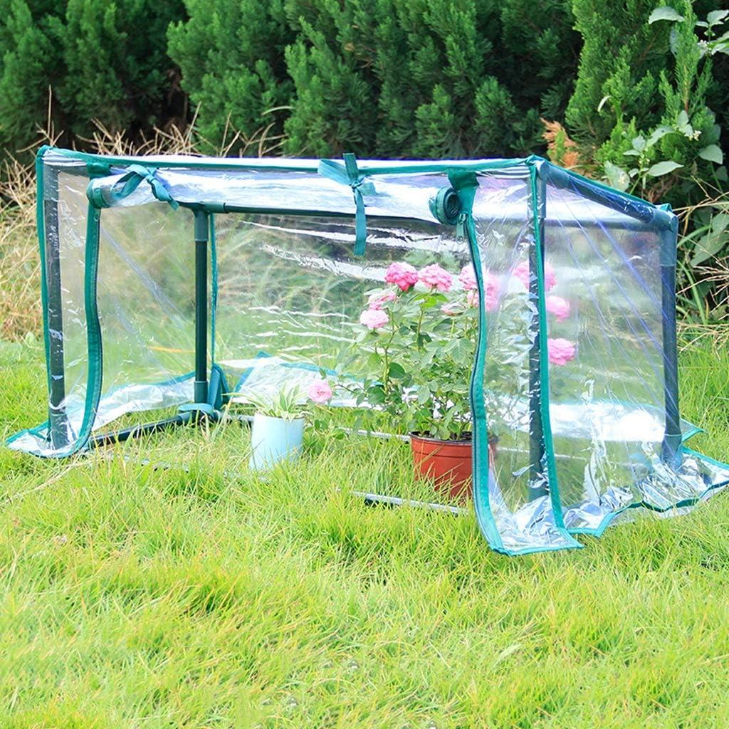 XY&CF-Flower house Planta de Invernadero de PVC Transparente ...