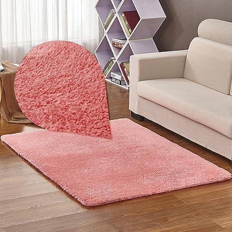 Amazon.com: DIDIDD Floor Mat/Living Room Coffee Table Bedroom ...