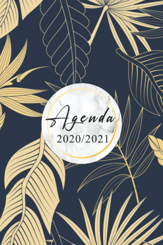 Agenda 2020 2021 Agenda 2021 Semainier A5 Planner Organisateur Planificateur Apercu Mensuel Et Hebdomadaire Simple Graphique 1 Semaine Sur 2 2020 A Decembre 2021 French Edition Klaudia Pauline 9798688318678 Amazon Com Books