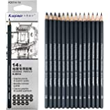 Artist Pencil Collection 14pcs/Set 12B 10B 8B 7B 6B 5B 4B 3B 2B B HB 2H 4H 6H Graphite Sketching Pencils Professional Sketch Pencils Set For Drawing
