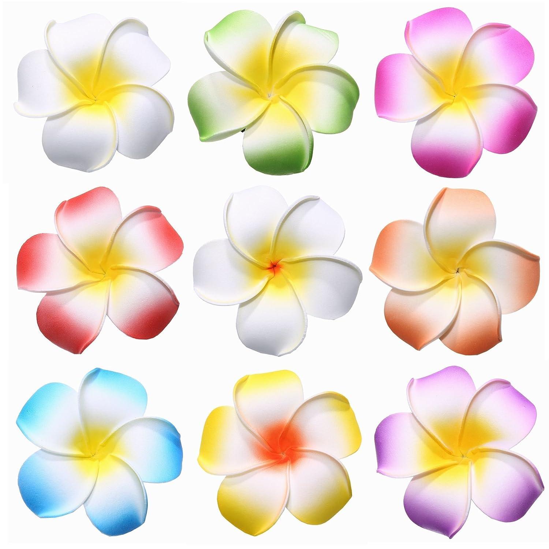 Amazon youbami 35 hawaiian plumeria foam flower hair clip amazon youbami 35 hawaiian plumeria foam flower hair clip accessory set of 9 pcs beauty izmirmasajfo