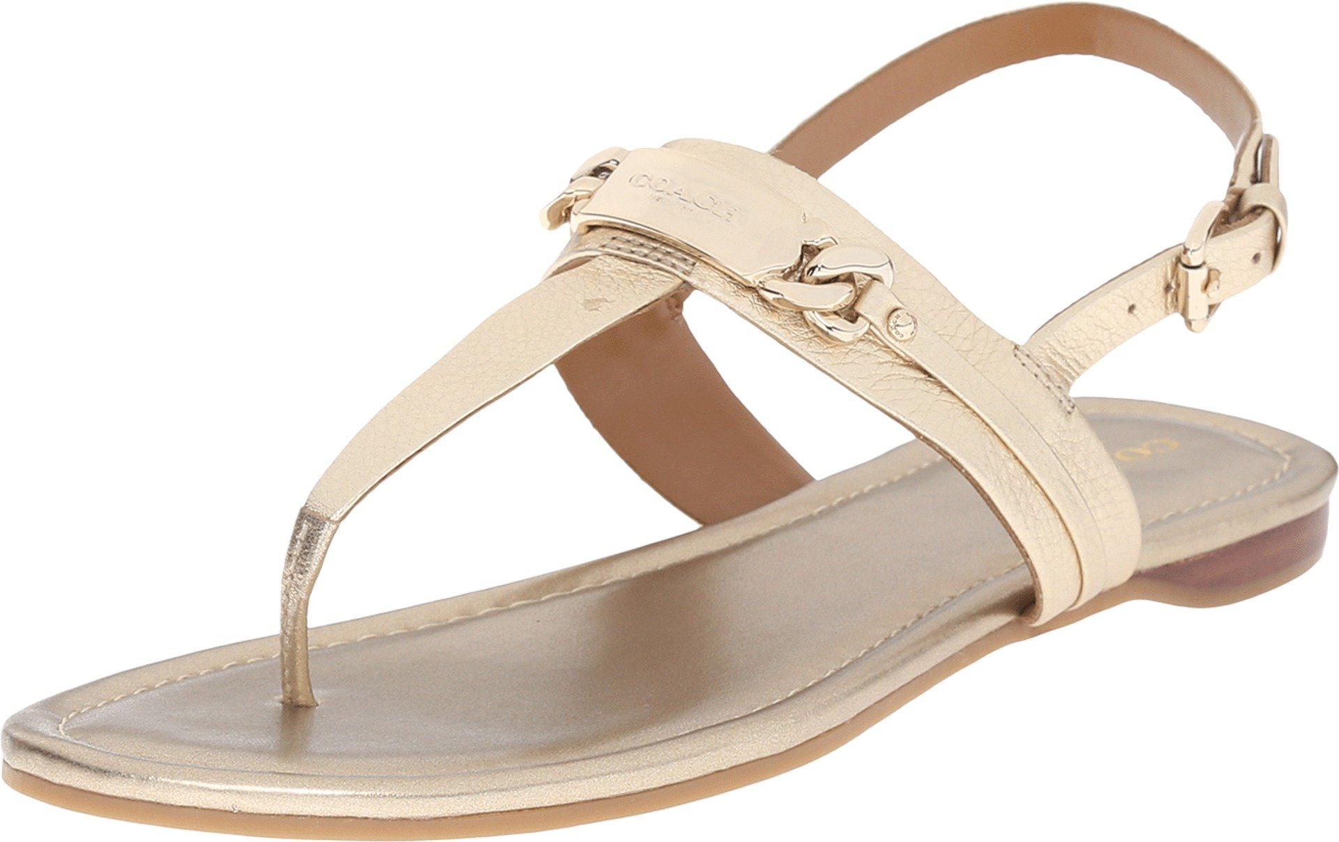 Coach Caterine Womens Leather Thong Sandals (8.5, platinum)