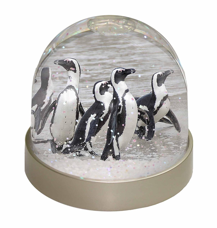 Advanta Sea Penguins Snow Dome Globe Waterball Gift, Multi-Colour, 9.2 x 9.2 x 8 cm Advanta Products AB-101GL