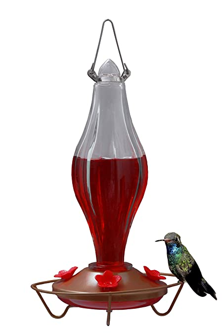 Chilipet Durable Metal Bottle Antique Glass Hummingbird Feeder Attract More Hummers To Your House Outdoor Garden Features 4 Red Flower Feeding