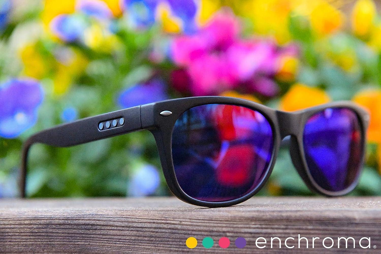 Amazon Com Enchroma Ellis Cx3 Sun Color Blind Glasses Outdoor