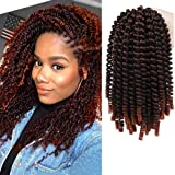 4 packs Spring Twist Crochet Curly Synthetic Ombre Colors Bomb Twist Nubian Twist Braiding hair extensions 110g (T1B-350)