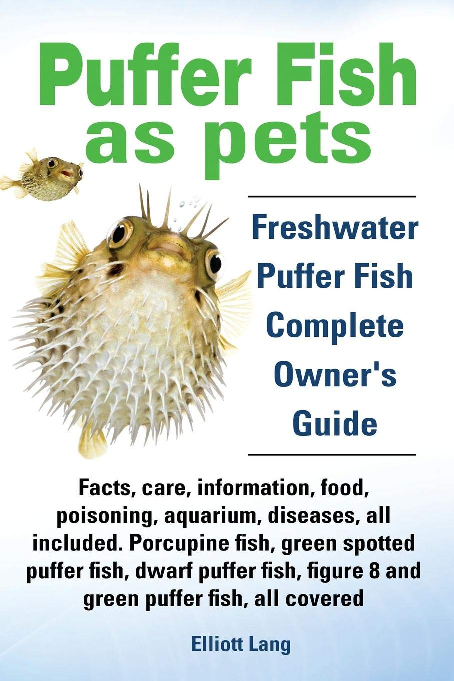 Puffer Fish As Pets. Freshwater Puffer Fish Facts Care Information Food Poisoning Aquarium Diseases All Included. The Must Have Guide For All P