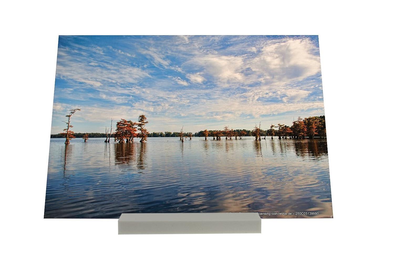 Soporte Fotografias Diversíon Lago de nube Letrero Nostálgica: Amazon.es: Hogar