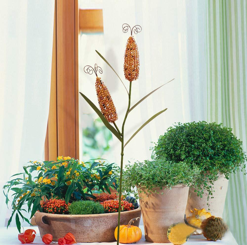 Waroom Home Estacas Decorativas de Metal para jardín de maíz ...
